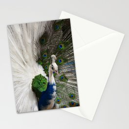 Blue White Peacock Stationery Cards