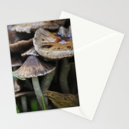 neuf. Stationery Cards