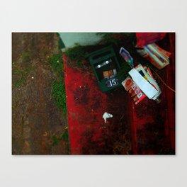 no advertising material. Canvas Print