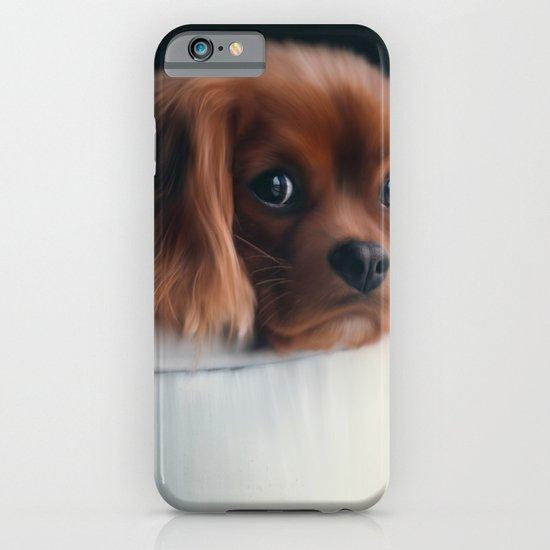 Truffles iPhone & iPod Case