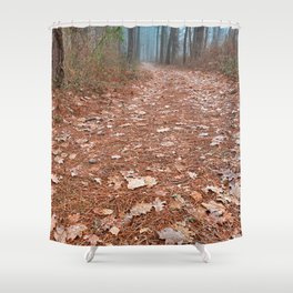 Frosty Forest Trail Shower Curtain