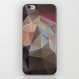 Pastel Pyramid Art iPhone Skin