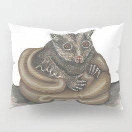 Cute Sugar Glider Pillow Sham