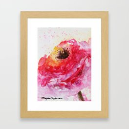 Big Pink Rose Blossom watercolor by CheyAnne Sexton Framed Art Print
