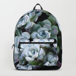 Sedum Clavatum Backpack