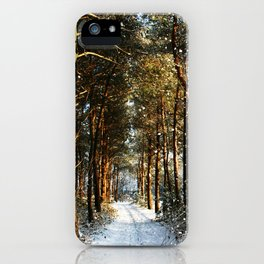 Forest Snow Scene iPhone Case