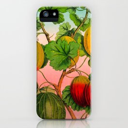 Gooseberry Fruit Branch iPhone Case