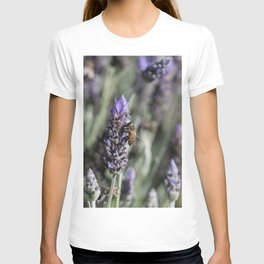 Lavender with Bee T-shirt