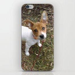Lil Pup iPhone Skin