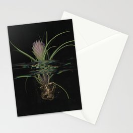 Mackenzie Stationery Cards