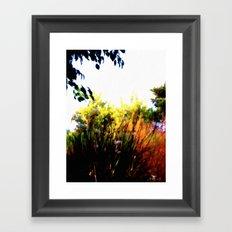 Backyard Hues Framed Art Print