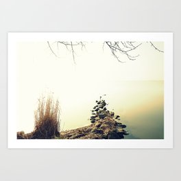 stones in calm Art Print