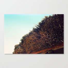 Thatched roof Canvas Print