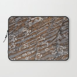 Cracked Stone Striations Laptop Sleeve