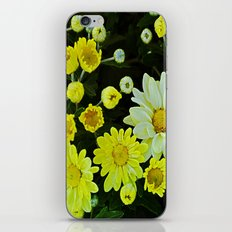 White mixed with Yellow iPhone & iPod Skin
