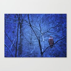 Waiting Out The Cold Canvas Print