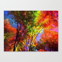 Magic Trees Canvas Print