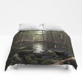 Mossy Brook Comforters