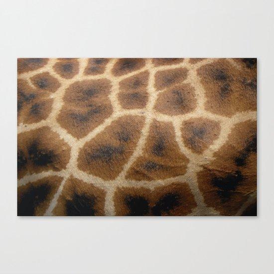 Giraffe Skin Canvas Print