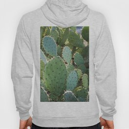 Don't Be a Prick Hoody