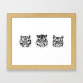 Sumatra Siberia & Bengal Framed Art Print