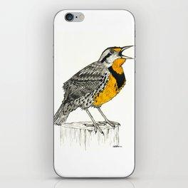 Eastern Meadowlark iPhone Skin