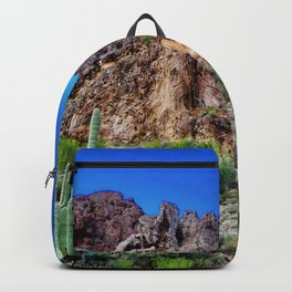 Endure Backpack