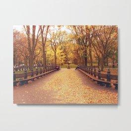 That Autumn Feeling - Autumn in New York Metal Print