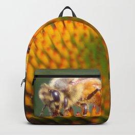 honeybee on cone flower 656 Backpack