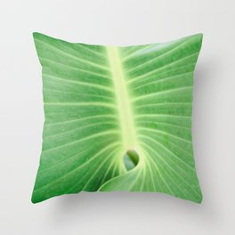 Palm CR Throw Pillow