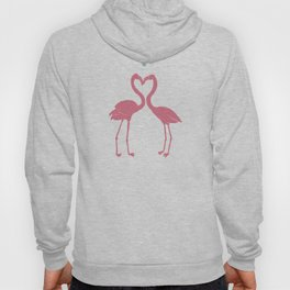 I'm Flamingoing Crazy without you Hoody