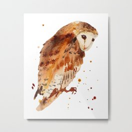 Owl, barn owl, woodland birds, harry potter wannabe gift, brown owl, watercolor owls Metal Print