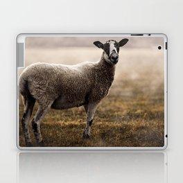 Dartmoor Wild Sheep Laptop & iPad Skin