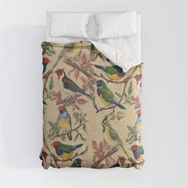 Vintage Birds Comforters