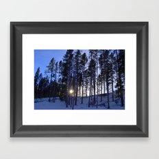 Light Through the Aspens Framed Art Print