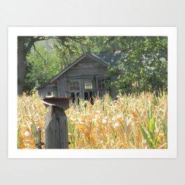 Waiting for Harvest Art Print
