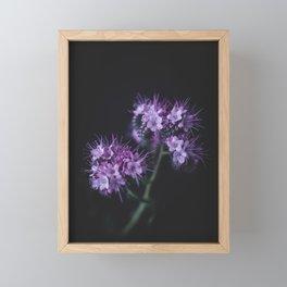 Purple Framed Mini Art Print