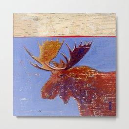 moose with birch bark Metal Print