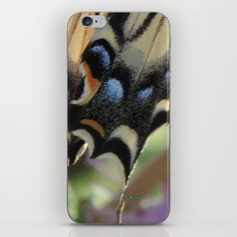 Detail of a Swallowtail iPhone Skin