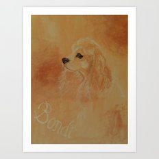 American Cocker Spaniel Art Print