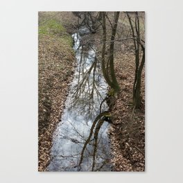 reflected on stream Canvas Print