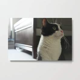I Can See Forever Metal Print