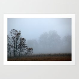 Misty Morning in Cades Cove, Great Smoky Mountain National Park Art Print