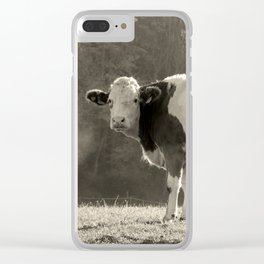Cow in Field Clear iPhone Case