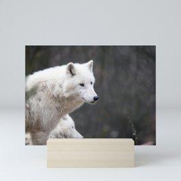 White Wolf Mini Art Print