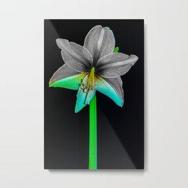 Blue-Green-Black & White Metal Print