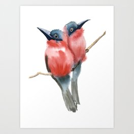 Couple Birds Art Print