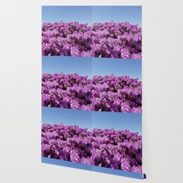 """View of """"Mount Rhodendron"""" on a clear day Wallpaper"""