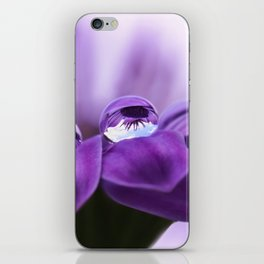 Violet flower with drops 262 iPhone Skin