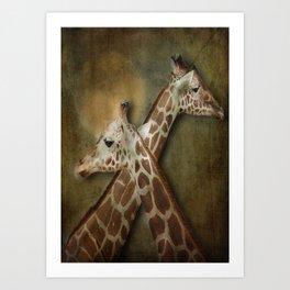 Giraffes Passing in the Night Art Print